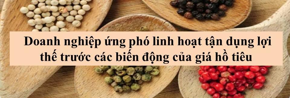 Triển vọng tươi sáng cho ngành hồ tiêu Việt Nam - Ảnh 5.