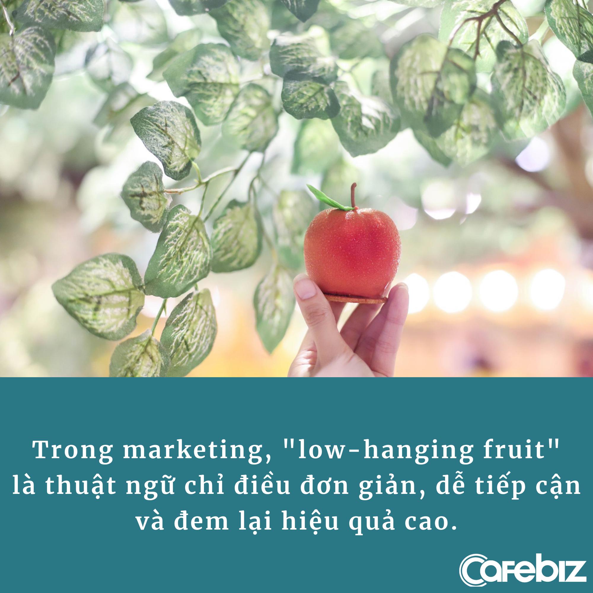 'Hái quả tầm thấp' – chiến thuật marketing giúp nhiều công ty vẫn ăn nên làm ra dù có ít khách hàng, bỏ ra chi phí tối thiểu thu về lợi nhuận không hề thấp - Ảnh 1.