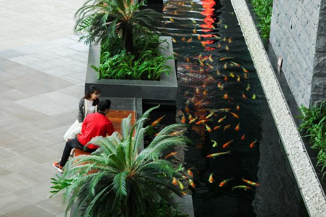 Khám phá không gian 'resort' tại Sân bay khu vực hàng đầu châu Á 2020 - Ảnh 6.