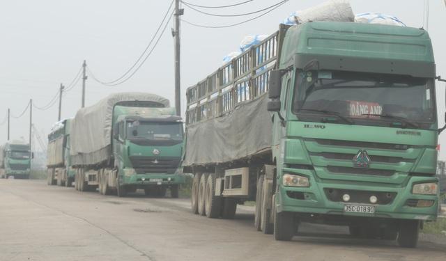 """Thanh Hóa: Những xe tải Logo """"Vip"""" của doanh nghiệp đang tung hoàng tại Tx Bỉm Sơn - Ảnh 4."""
