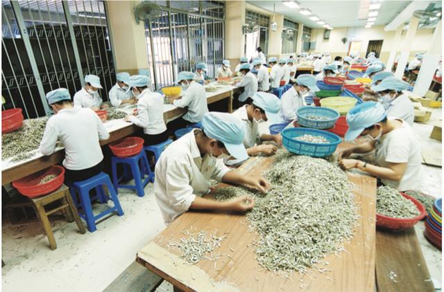 Nâng cao mức sống, cải thiện điều kiện làm việc của người lao động - Ảnh 3.