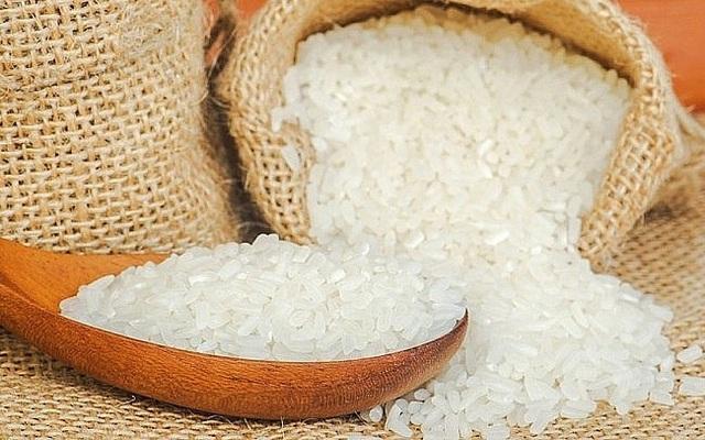 Giá lúa gạo hôm nay 21/9: Giá lúa biến động trái chiều - Ảnh 1.