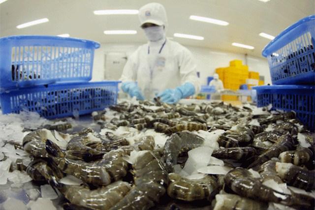 Kim ngạch nhập khẩu thủy sản 8 tháng đạt gần 1,35 tỷ USD - Ảnh 1.