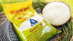 Gạo ST25 của Việt Nam đăng ký nhãn hiệu ''Gạo ông Cua'' tại Mỹ