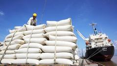 Mỹ dự báo xuất khẩu gạo Việt Nam đứng thứ 2 thế giới