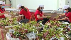 Xuất - nhập khẩu nông, lâm, thủy sản giữa Việt Nam và Trung Quốc tăng 28%