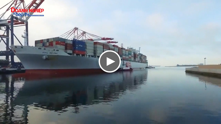 Cảng biển Bờ Tây nước Mỹ tắc nghẽn nghiêm trọng